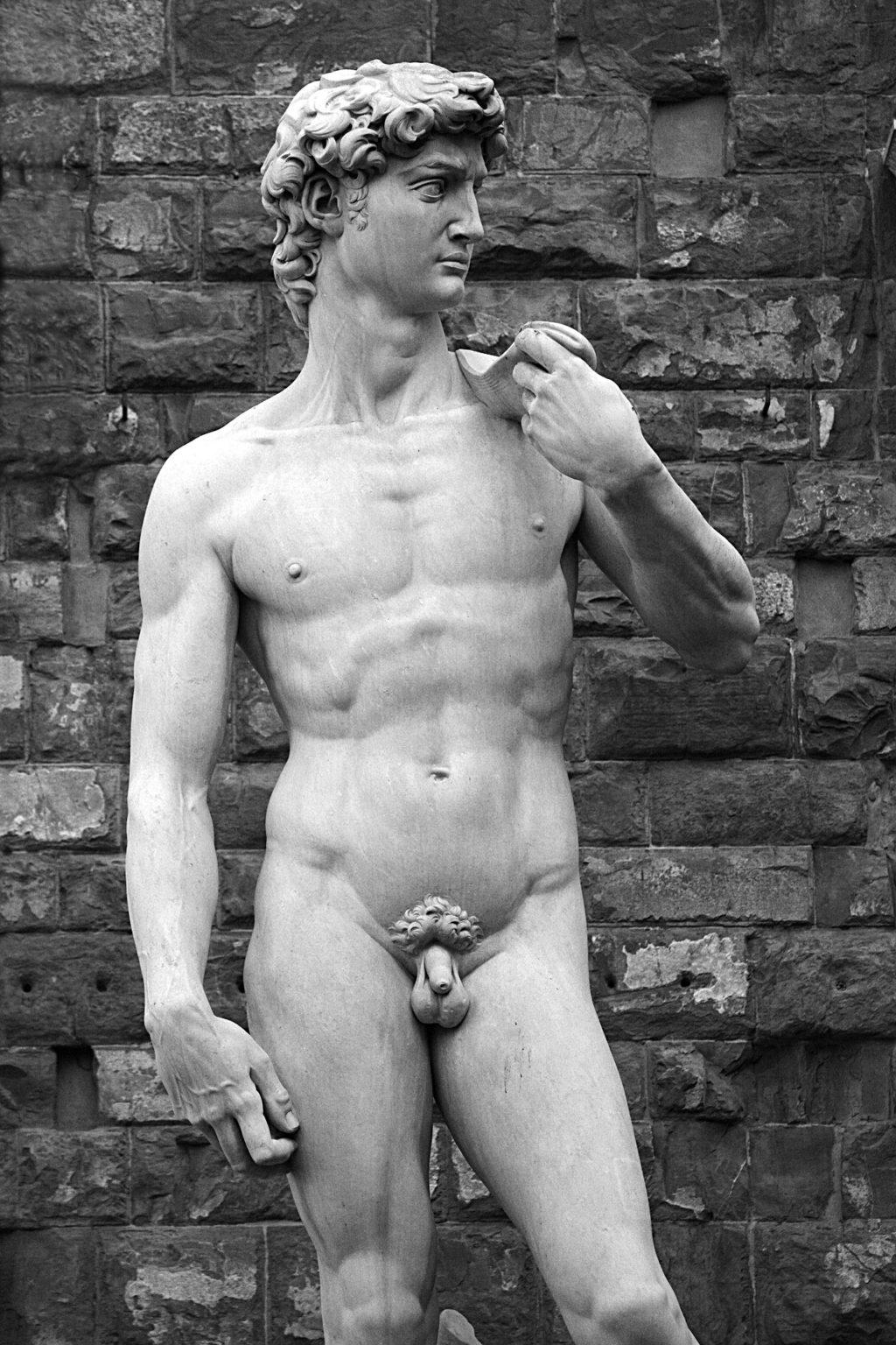 The statue of David at the Piazza della Signoria